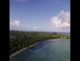 Великолепный Мадагаскар