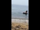 Пляж горностай