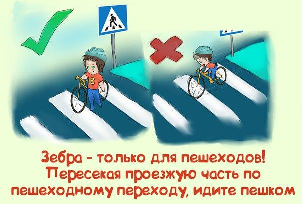 Как велосипедист должен пересекать пешеходный переход 2018