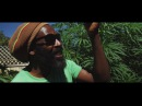 I-Taweh - Herb Treez (Official Music Video) December 2016