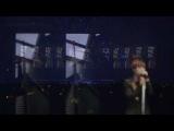 BIGBANG LOVE&ampHOPE TOUR 2011 Baby Don't Cry Daesung(D-LITE)