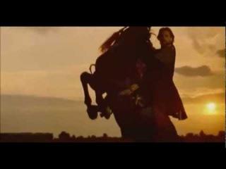 Огнем и мечом. Богун