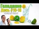 Голодание по М.В.Оганян | День 16-18 | Рассасывание меда?! КЛИЗМА.