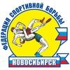 Федерация спортивной борьбы НСО