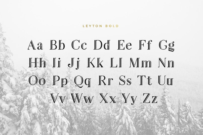 Download Leyton Bold font (typeface)