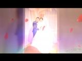 Свадьба Юлии и Дмитрия Жуковых (18.11.16)