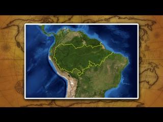 Природные районы материка Южная Америка_ равнинный Восток