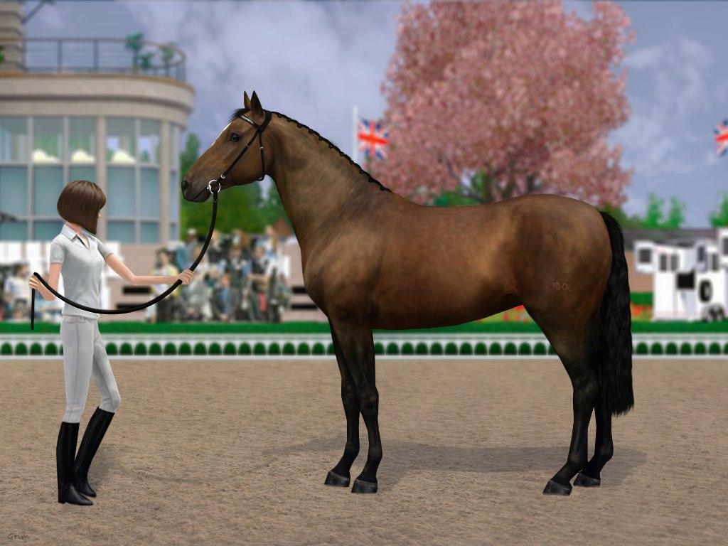 Регистрация лошадей в RHF 2 - Страница 38 QXE1-EyxJg4