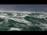 Релаксирующиевиды океанов и морей