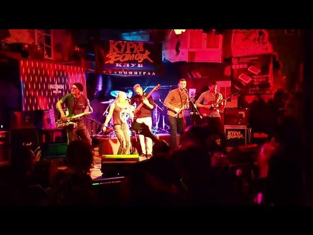 Dr. Gonzo - Крокодил (live at Revolution Festival 18.03.2017)
