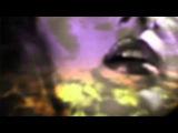 Bryan Ferry - Shameless Official
