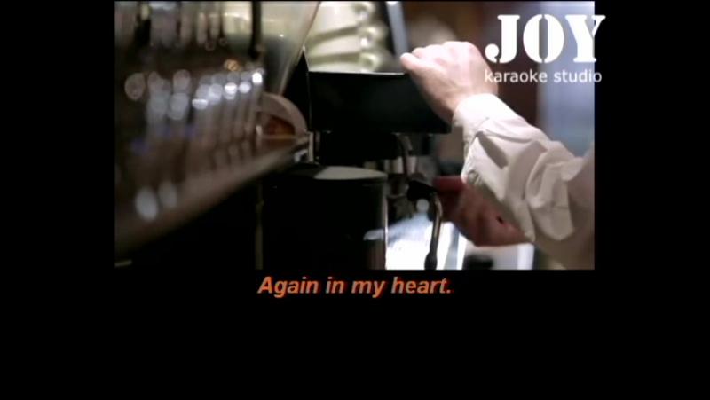 Vigon Bamy Jay - Feelings (karaoke version engl)