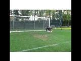 16-летний вратарь Милана Доннарумма на тренировке