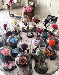 Роза в колбе цена фото