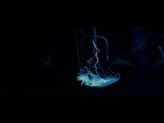 Endless Gravity 14-BIT RAW
