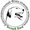 """Благотворительный Фонд """"Белый Бим"""" г. Кострома"""