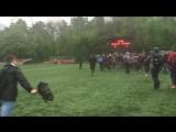 Локомотив - чемпион молодежного первенства по футболу