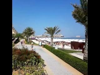 Отель Rixos Bab Al Bahr 5* (Рас-Эль-Хайма, ОАЭ)
