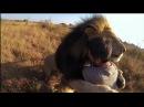 люди,которые заслужили доверие и любовь диких животных