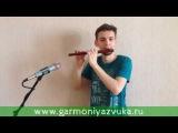 Флейта Мирра в До из палисандра. Импро 2. Мастерская
