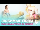 Любимые позы порнозвезд в сексе feat Teddy Bear