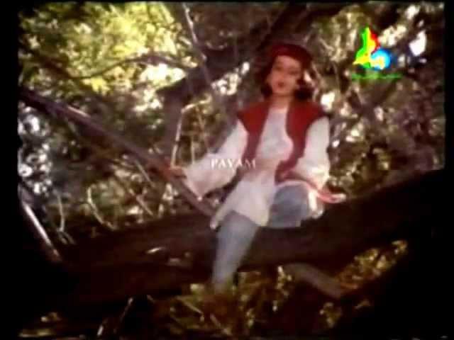 Boo Ali Seena In Complete Urdu Language Episode 01