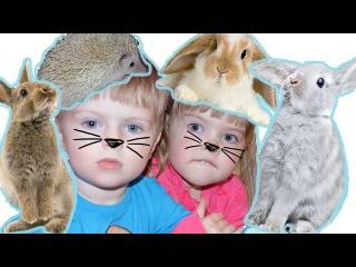 детский канал ЛЕРА и МАРК поехали в Контактный зоопарк Самый лучший канал для де...