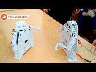 Fighting robots Konotop 😱💤