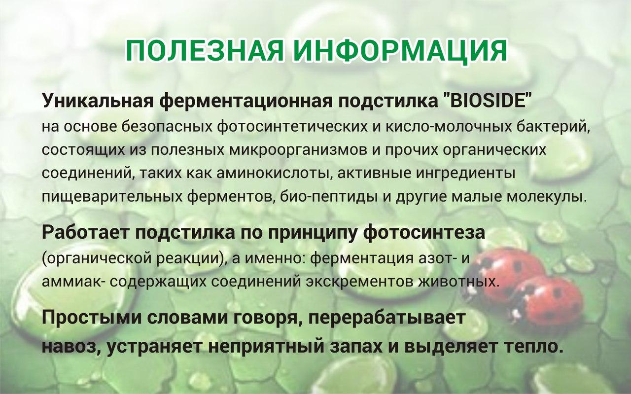 https://pp.vk.me/c626317/v626317485/9c30/vSDx3y2q9Z0.jpg