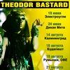 THEODOR BASTARD (world/ethno/tribal/trip-hop)