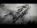 чёрные реки одиночества / black rivers of loneliness
