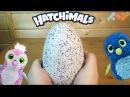 Hatchimals - Хетчималс Пингвинчик - интерактивный питомец, вылупляющийся из яйца - Полный обзор