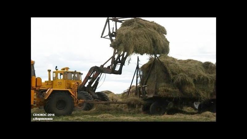 Сенокос-2016 возле села Корниловка (Люблинский сельский округ, Карасуский район)