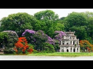 Căn Hộ Cho Thuê Tại Hà Nội