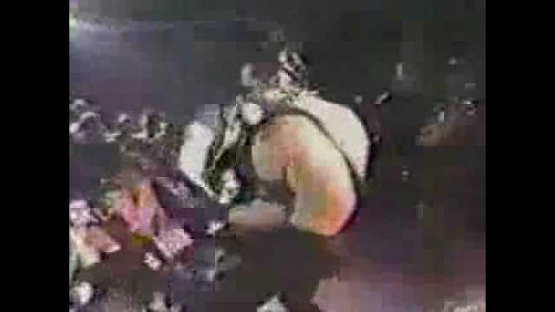 The Misfits-Die Die My Darling (Live-1983)