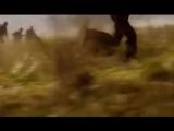О той весне песня про войну.Поют дети на пятом канале.Стихи и музыка Елены Плотниковой. 480p