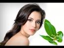 20 целебных свойств лаврового листа, рецепты