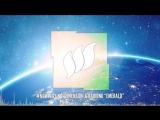 Radion6 &amp Dimension Emerald