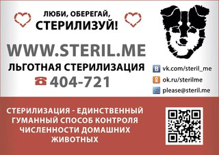 Кастрация кота в иркутске