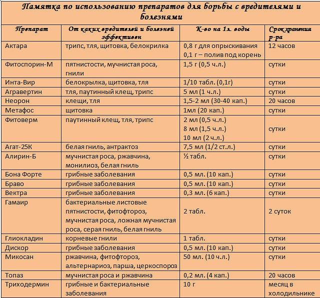 вредители комнатных растений JTMeGfzh9wQ
