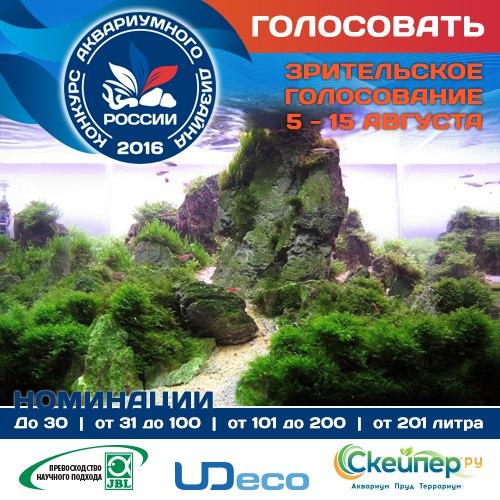 Конкурс аквариумного дизайна России 2016 FzRiDRX3_pI