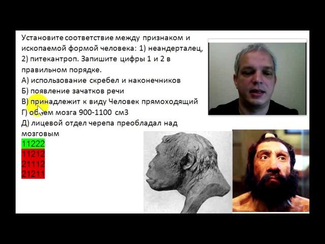 Признаки неандертальца и питекантропа