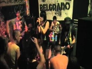 BELGRADO–Nowa Aleksandria (cover Siekiera)