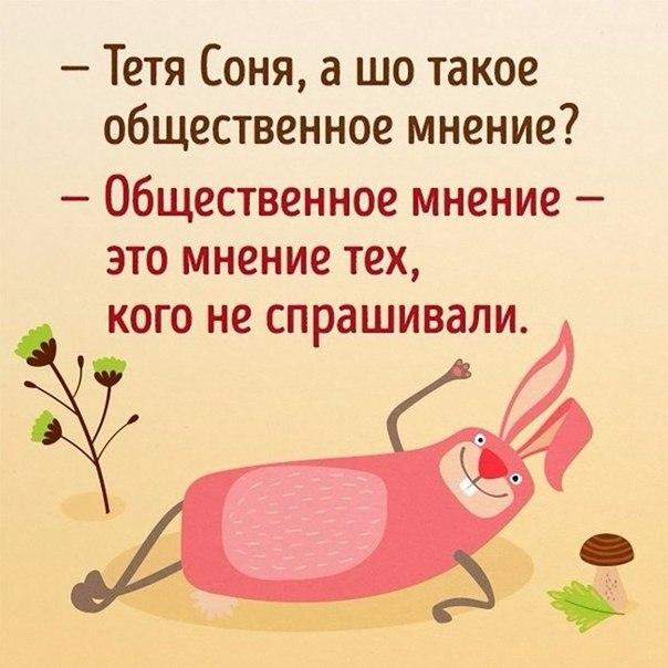 https://cs541604.vk.me/c626319/v626319254/6d43d/EbEI56bNz90.jpg
