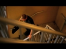 CSI Место преступления Майями. Сезон 9 Серия 22