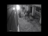 Парень поставил на место местных быков защитив свою девушку