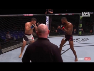 UFC Fight Night - 107 EDWARDS-LUQUE обзор боя