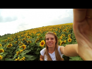 Желтое путешествие #OKGo