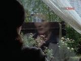 Безмолвный свидетель 6 сезон 4 серия из 8 Страх и Трепет