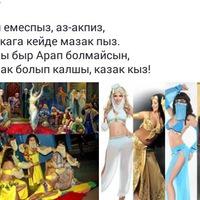 Аватар Максата Мейрімді